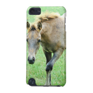 Roaming Roan Horse  iTouch Case iPod Touch (5th Generation) Cover