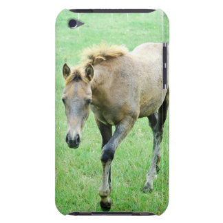Roaming Roan Horse iTouch Case Barely There iPod Case