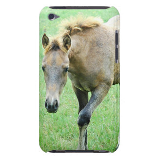 Roaming Roan Horse  iTouch Case iPod Touch Covers