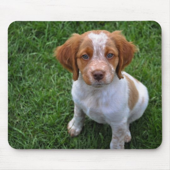 Roan Brittany Puppy Mousepad