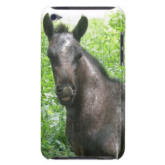 Roan Colt iTouch Case iPod Touch Case