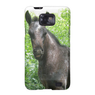 Roan Colt Samsung Galaxy Case Galaxy S2 Covers