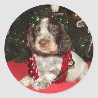 Roan English Springer Spaniel Christmas Puppy Classic Round Sticker