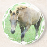 Roan Horse Coasters
