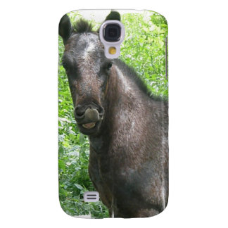 Roan Horse iPhone 3G Case Samsung Galaxy S4 Cover
