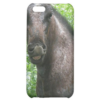 Roan Horse iPhone Case Cover For iPhone 5C