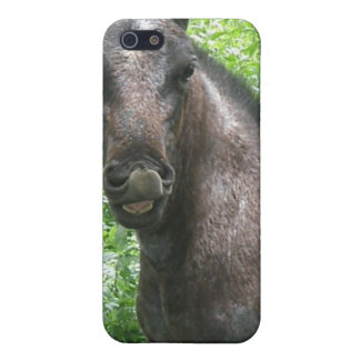 Roan Horse iPhone Case iPhone 5 Cover