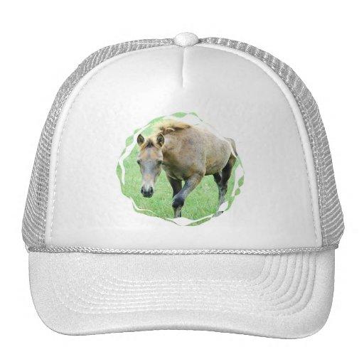 Roan Horse Photo Baseball Cap Hat