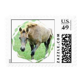Roan Horse Postage Stamp