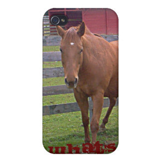 Roan Horse What's Up 4G case