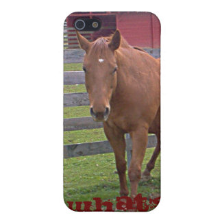 Roan Horse What's Up 4G case iPhone 5 Cover