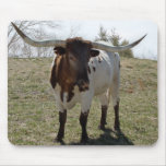 Roan Longhorn Steer- personalize if desired Mouse Pad