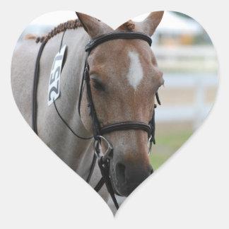 Roan Pony Stickers