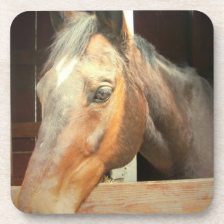Roan Thoroughbred Horse Set of Coasters