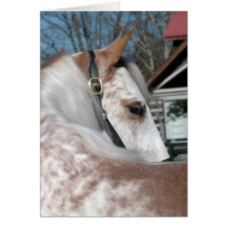 Roan Walking Horse Card