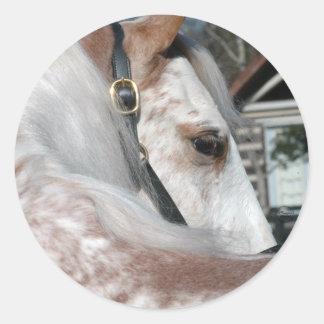Roan Walking Horse Classic Round Sticker