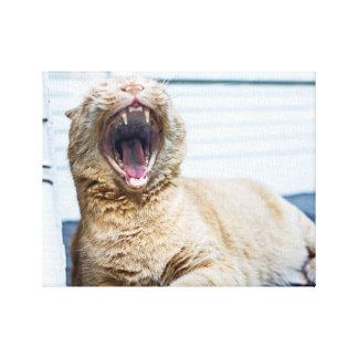 Roar like a Cat Canvas Print