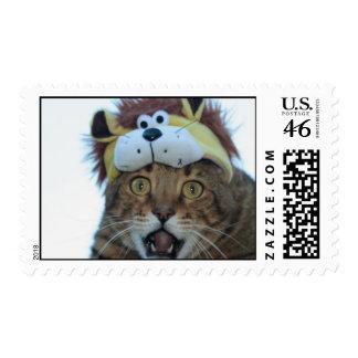 roar stamps