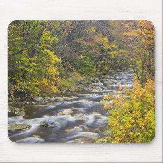 Roaring Brook in fall in Vermont's Green 2 Mouse Pad