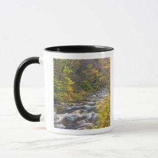 Roaring Brook in fall in Vermont's Green 2 Mug