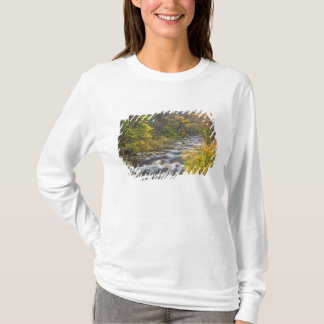 Roaring Brook in fall in Vermont's Green 2 T-Shirt