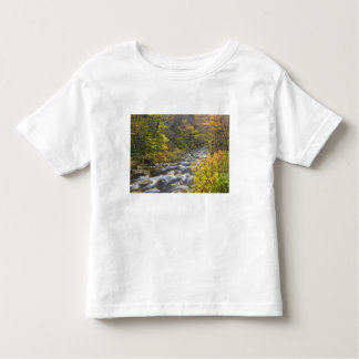 Roaring Brook in fall in Vermont's Green 2 Toddler T-shirt