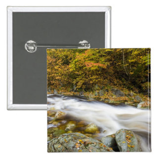 Roaring Brook in fall in Vermont's Green Button