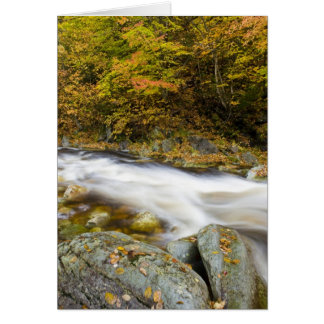 Roaring Brook in fall in Vermont's Green Card