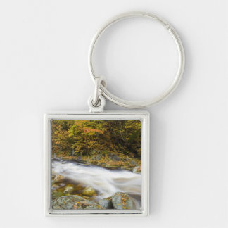 Roaring Brook in fall in Vermont's Green Keychain