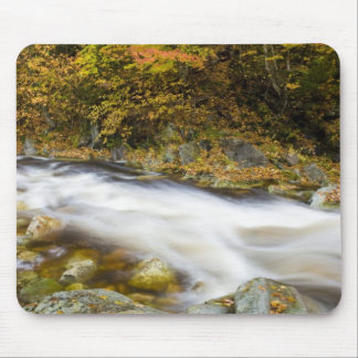 Roaring Brook in fall in Vermont's Green Mouse Pad