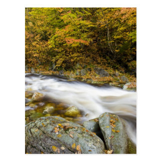 Roaring Brook in fall in Vermont's Green Postcard
