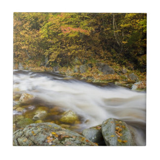 Roaring Brook in fall in Vermont's Green Tile