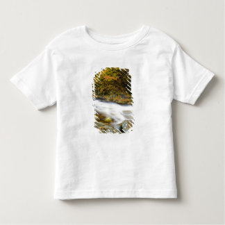 Roaring Brook in fall in Vermont's Green Toddler T-shirt