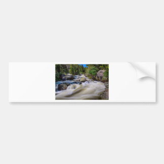 Roaring Colorado Ouzel Creek Bumper Sticker