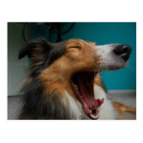 Roaring Dog Postcard