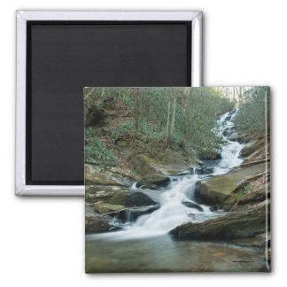 Roaring Fork Falls 2 Inch Square Magnet
