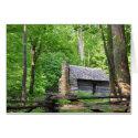 Roaring Fork Nature Trail, Smokies Greeting Cards