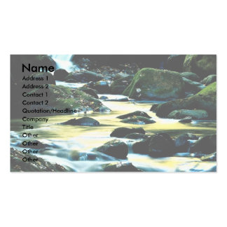 Roaring Fork Trail, Smoky Mountain National Park, Double-Sided Standard Business Cards (Pack Of 100)