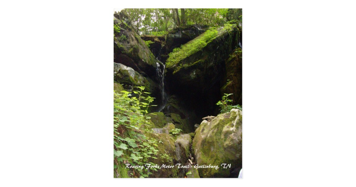 Roaring Fork Motor Nature Trail Gatlinburg Tn Impremedia Net