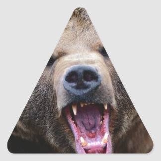 Roaring Grizzly Bear Triangle Sticker