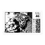 Roaring Jaguar Postage