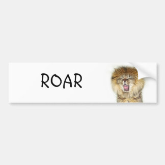 Roaring lion kitten bumper sticker