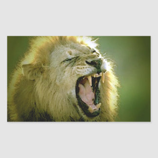 Roaring Lion Rectangle Stickers