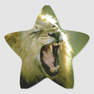 Roaring Lion Star Sticker
