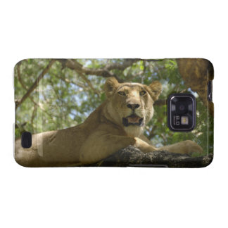 Roaring Lioness Galaxy SII Cases