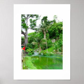 Roaring River, Westmoreland, Jamaica Poster