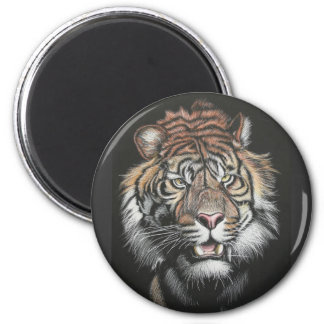 Roaring Tiger in Scratch Board 2 Inch Round Magnet
