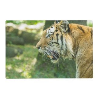 Roaring Tiger Placemat