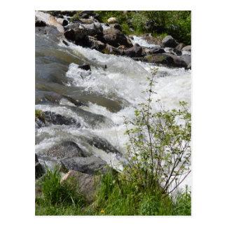 Roaring Waters Postcard