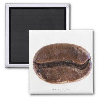 Roast coffee bean, studio shot magnet